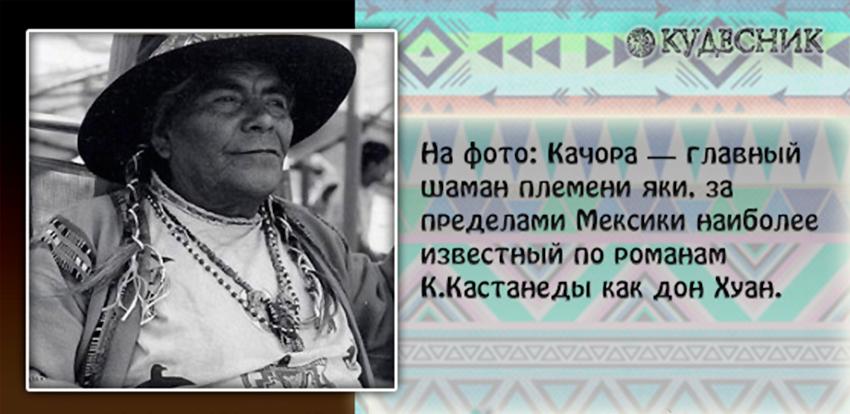 kodeks shamana